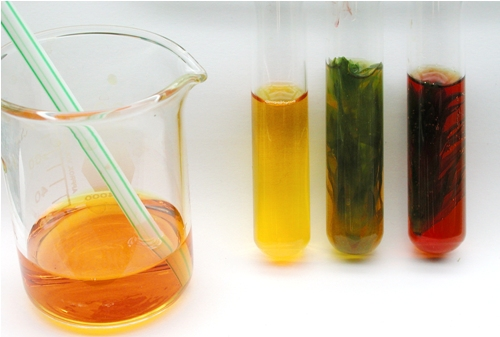 uptake co2 during photosynthesis lab elodea Lab is set up by placing elodea plants in test tubes with a solution of phenol red a change in color occurs as carbon dioxide is consumed photosynthesis -co2 consumption.