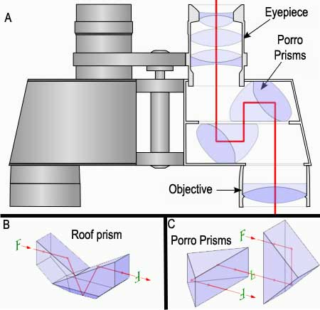 binocular diagram | Diarra